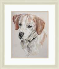 A4 Pastel Dog Portrait